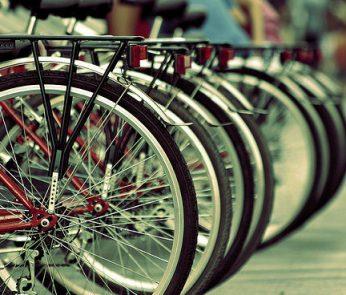Bucolica Bike Ride 2014