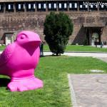 rondini castello sforzesco primavera milano 2014 (3)