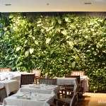 Hotel Manin Garden_3