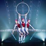 Quidam Cirque du Soleil (4)