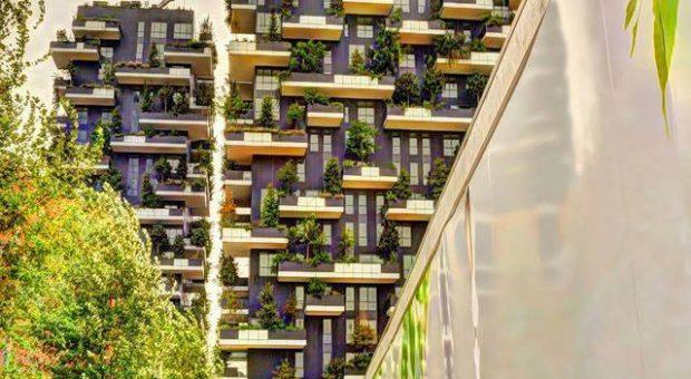foto-bosco-verticale-porta-nuova