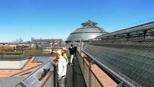 Rendering tetti galleria milano