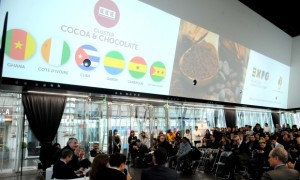 Cacao-expo-preview