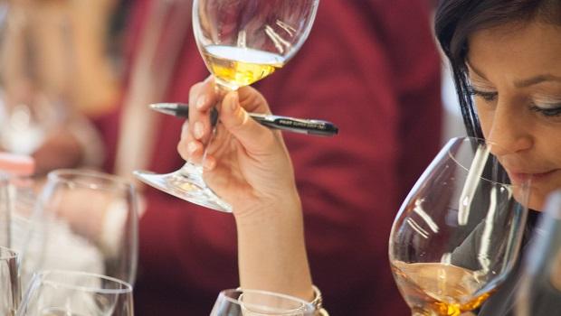 merano wine festival assaggi