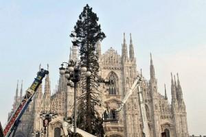 albero-natale-piazza-duomo-3