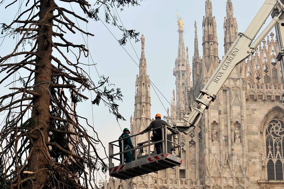 albero-natale-piazza-duomo