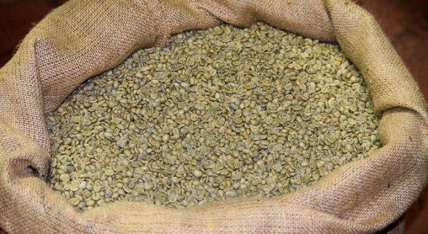 Caffè Agust stabilimento Brescia (3)