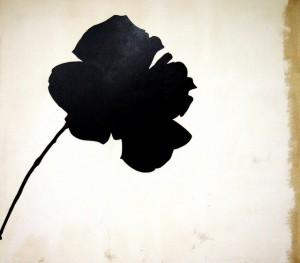 Jannis Kounellis - La rosa nera