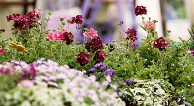 arte-e-natura-fiori-in-villa