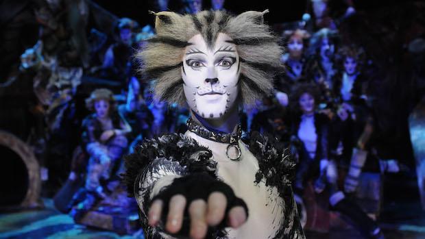 cats-musical-teatro arcimboldi