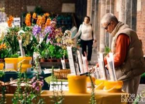 Flora et Decora 2016: a Sant'Ambrogio la mostra mercato di primavera