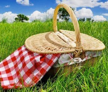 Cestino-del-picnic