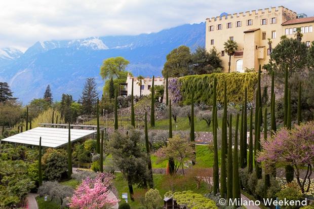 Merano giardini Castello cipressi