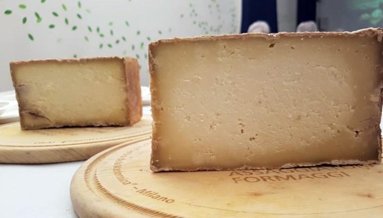formaggitalia