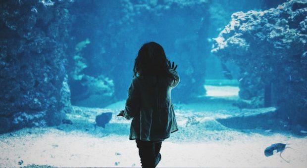 acquario-milano-bambini
