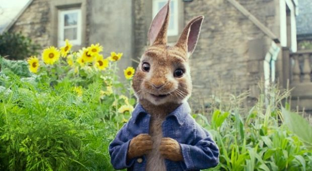 peter-rabbit-min
