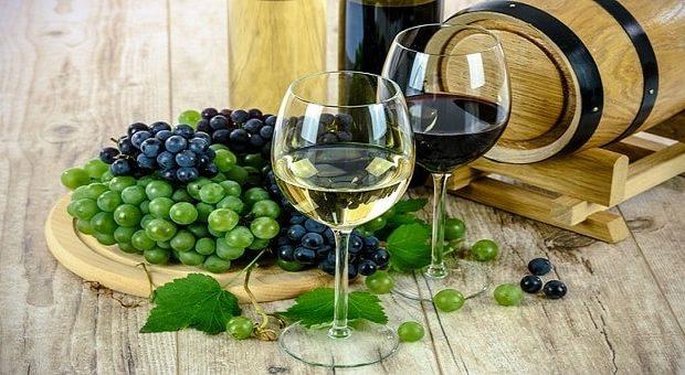 Wine Cuo Altabadia