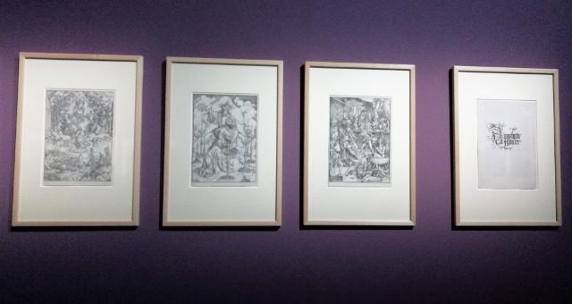 mostra Dürer milano