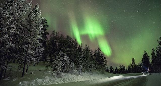 boreali-208-milano