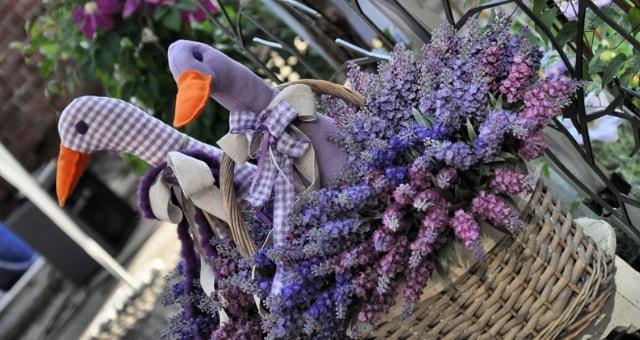flora et decora