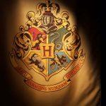 harry potter anteprima mostra (15)