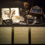 harry potter anteprima mostra (25)