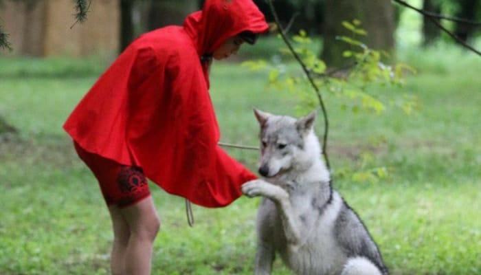 pedala coi lupi besana brianza