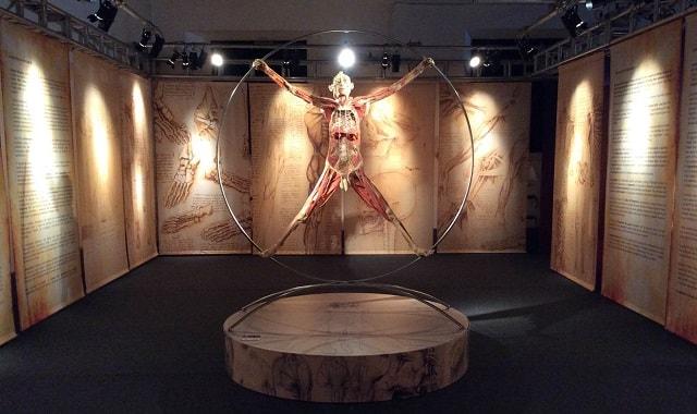 real-bodies-vitruviano-min
