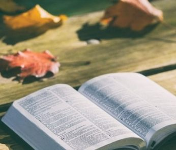 libri milano autunno