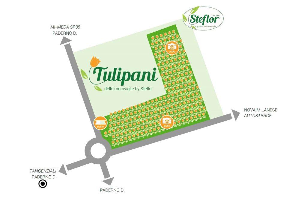 tulipani delle meraviglie mappa