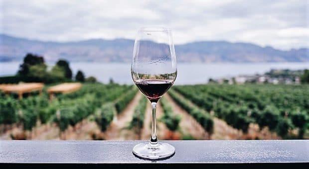 vino-cantina-natura