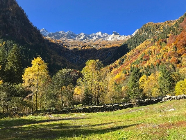 Val_masino,_autunno