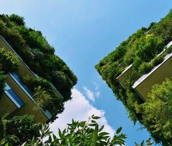 bosco-verticale-verde-min